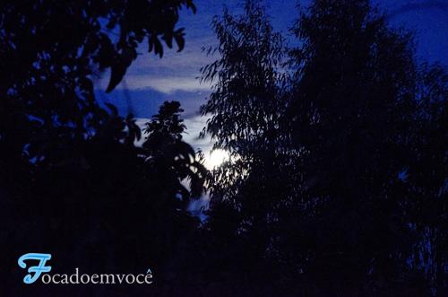 Mandacaru, Lua